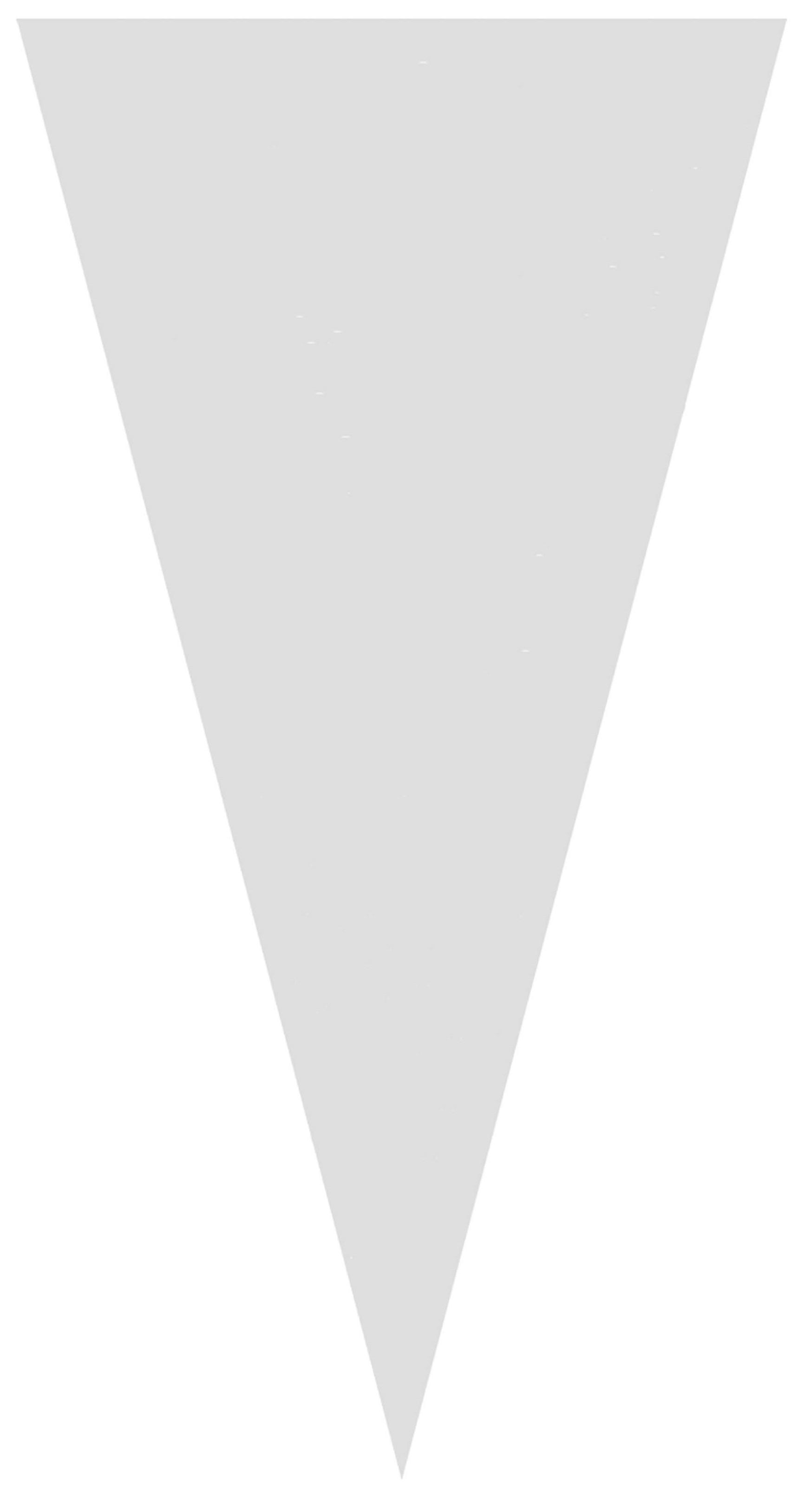 1529 Bolsa Cono 25X50 Transparente Image